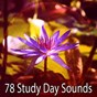 Album 78 study day sounds de Asian Zen Spa Music Meditation