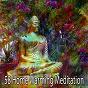 Album 58 home warming meditation de Massage Therapy Music