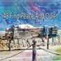Album 48 find peace and quiet de Rest & Relax Nature Sounds Artists