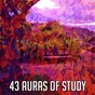 Compilation 43 auras of study avec White Noise Research