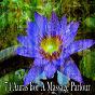 Album 74 auras for a massage parlour de Meditación Música Ambiente