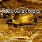 Album 65 mind calming sounds de Meditation Awareness