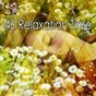 Album 46 relaxation time de Sleepy Night Music
