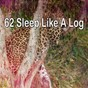Album 62 sleep like a log de White Noise for Baby Sleep