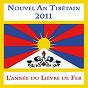 Compilation Nouvel an tibétain 2011 - l'année du lièvre de fer avec Zakir Hussain / Lama Karta / Dechen Shak Dagsay / Dr. L. Subramaniam / Zakir Hussain, the Rhythm Experience...