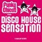 Compilation Funky chicos present disco house sensation avec Kevax / Funky Chicos / Happy Weekend / Basian Bates / Pulsedriver...