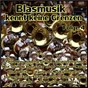 Compilation Blasmusik kennt keine grenzen, folge 4 avec Trad , Geiger, Bayer / Henrion / Original Kaiserlicher Musik Korps / Avsenik, Rauch / Slavko Avsenik & das Original Oberkrainer Quintett...