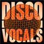 Compilation Disco Vocals: Soulful Dancefloor Cuts Featuring 23 Of The Best Grooves avec Amii Stewart / Inner Life / Loleatta Holloway / First Choice / Double Exposure...