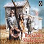 Compilation Rockabilly shakedown avec Wright / Harold E Riley / John Worthan / Avery Mote / Hall...