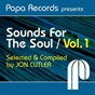 Compilation Papa records presents sounds for the soul, vol. 1 (selected & compiled by jon cutler) avec Os Malandros / Reel People / DJ Spinna / Domu, Pete Simpson / Faze Action, Orto...