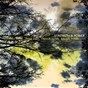Compilation Strength & power avec Jamie Saft / Roswell Rudd / Trevor Dunn / Balázs Pándi