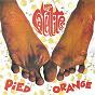 Album Pied orange de Les Satellites