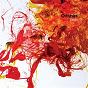 Album Bruja de Orishas