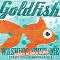 Album Washing over me (romeo blanco remix) de Goldfish