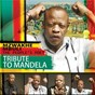 Album Tribute to mandela de Mzwakhe Mbuli