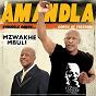 Album Amandla de Mzwakhe Mbuli