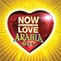 Compilation Now love arabia 2011 avec Slim Salamh / Elissa / Bilal Zain / Fadel Shaker / Kazem Al Saher...