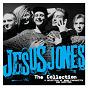 Album The collection de Jesus Jones