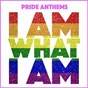 Compilation Pride anthems (i am what i am) avec Donna Summer / Gloria Gaynor / Dean Hazell / Sabrina / Kelly Marie...
