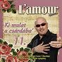 Album Ki mulat a csárdába', vol. 11 de L'amour