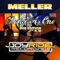 Album Dance as one (dub edition) (remixes) de Meller