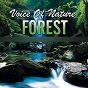 Album Voice of nature forest de Zeki Ertunç